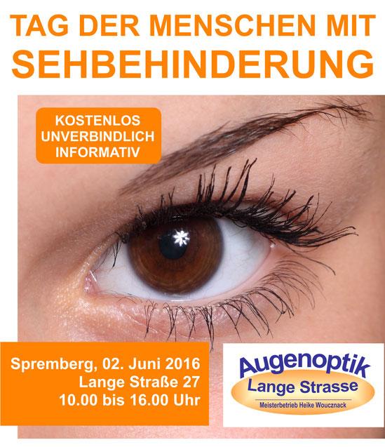 Poster vom Tag der Menschen mit Sehbehinderung und Blindheit 2016 in Spremberg
