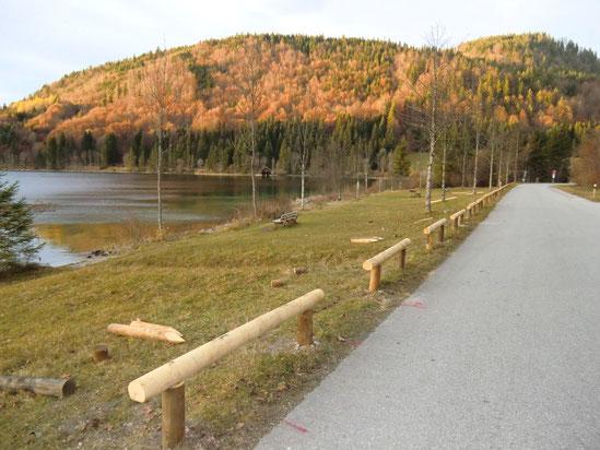 Holzbeplankung aus Edelkastanie entlang der Mautstrasse Einsiedl - Jachenau am Walchensee Südufer