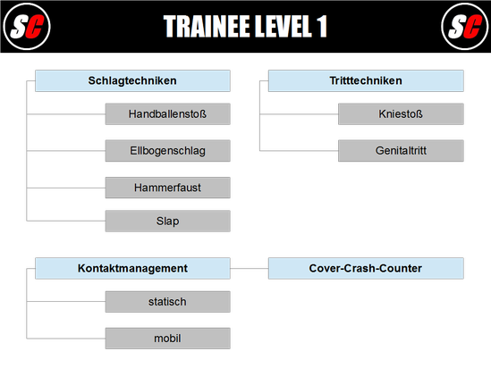SC Int'l - Street Combatives - Trainee Program Level 1 (deutsch)