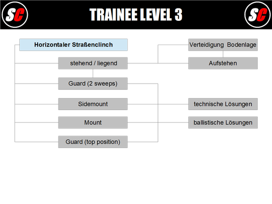 SC Int'l - Street Combatives - Trainee Program Level 3 (deutsch)
