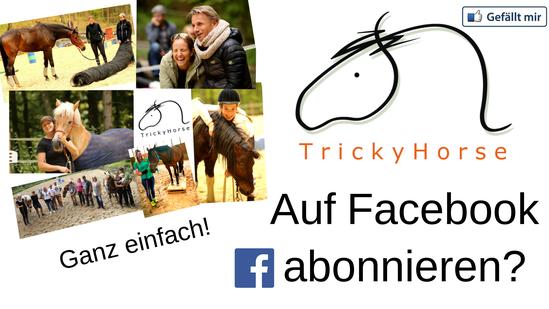TrickyHorse auf facebook  - coole Beiträge & jede Menge Infos