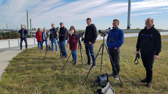 Vogelbeobachtung mit Panoramablick.      Foto: freundlicher Spaziergänger