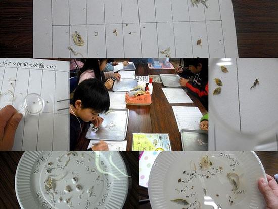 理科実験教室の写真