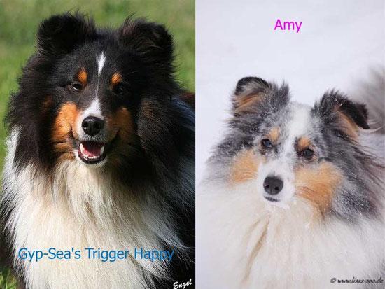 Amy und Baxter