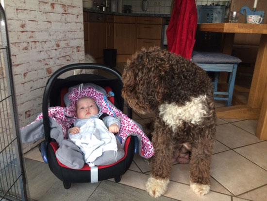 Auch als Hunde-Mama ist man multitask. Ganz egal ob Hunde- oder Menschenbabys - kein Problem.