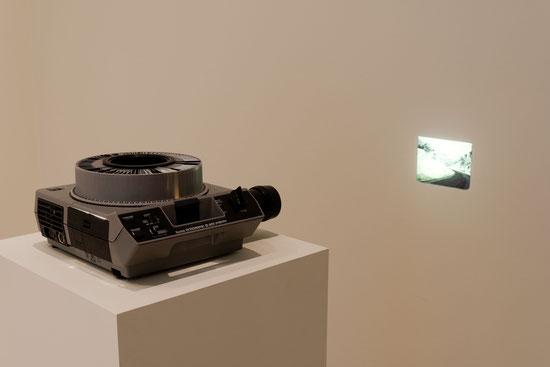 Sofiane Zouggar, installation, The Wallach Art Gallery, Columbia University, New York, Waiting for Omar Gatlato, Algerian Contemporary Art, Contemporary Art, Natasha marie Llorens, Art contemporain Algerien,