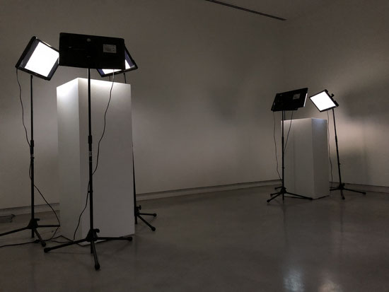 Sofiane Zouggar, plant and politics, Contemporary Algerian art, Memory of Violence, archive art, algeria civil war, terrorism, , experimental art installation, Artefact, plants art, Sharjah art Foundation, Art contemporain Algerien,الفن المعاصر