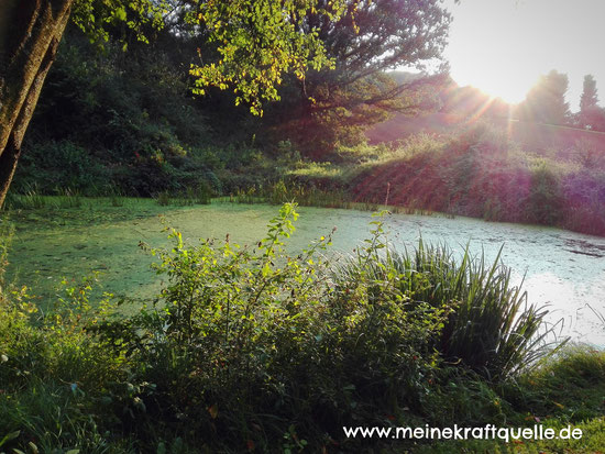 Kraftquelle, magischer Teich, magischer See, Elfensee
