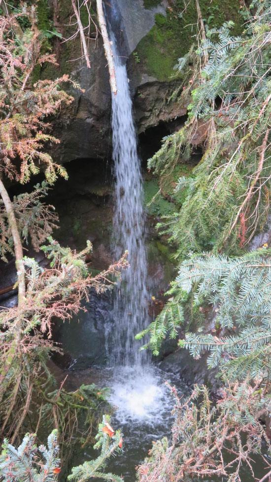 Rund um Nöggenschwiel führen 23 km ausgeschilderte Rosen-Wanderwege mit teils fantastischen Ausblicken in den Schwarzwald. Spektakulär ist auch der in der Nähe gelegene Indlekofen-Wasserfall.