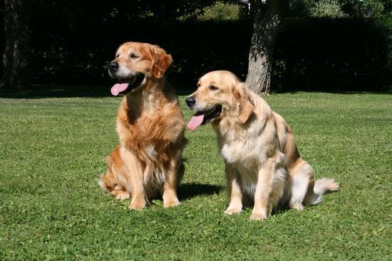 Ramse und Ruby