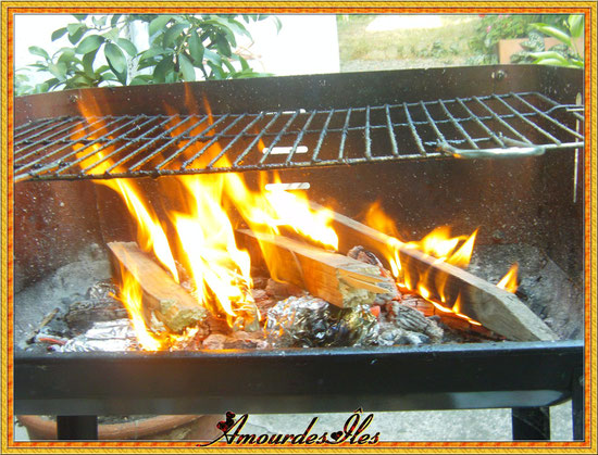 BARBECUE ALLUME...