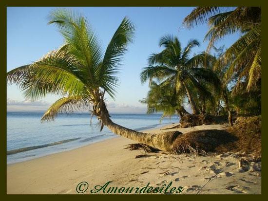Une superbe plage!