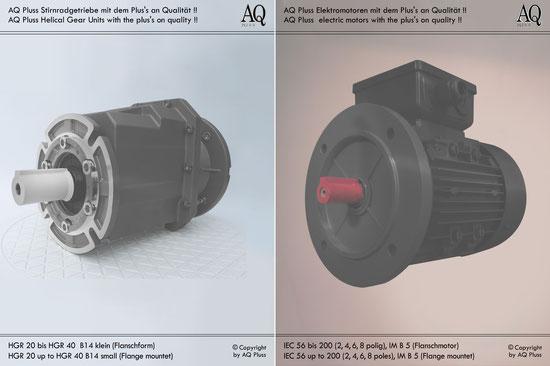 Stirnradgetriebe mit EW-Motor 230V B14 kl