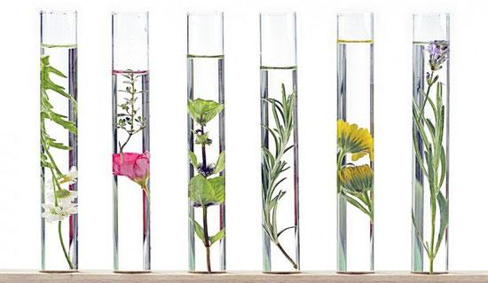 Lyon Clean Aromatherapie
