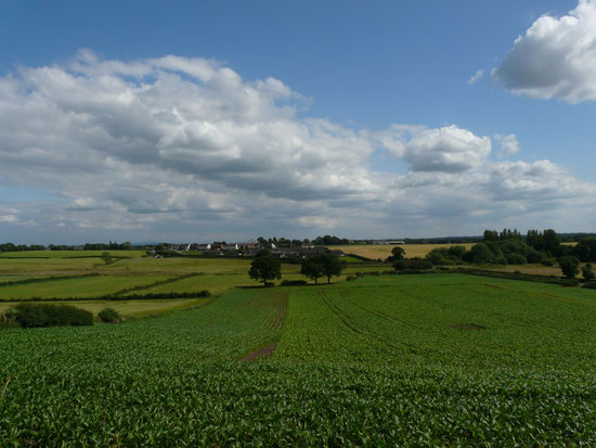 Chesterfield Landscape