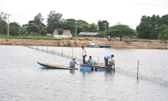 養殖所に水質モニタリング用のネットワークセンサーを設置