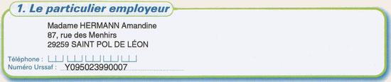 Informations relatives à l'employeur (cadre 1)