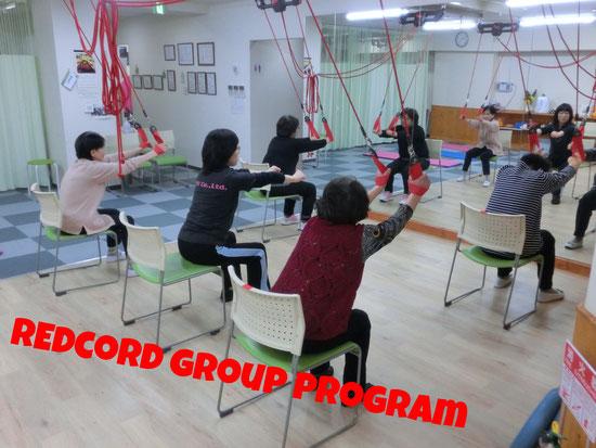 レッドコードグループプログラム