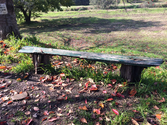 しばらく川沿いを歩きます。いたる処に年季の入ったベンチがあります。