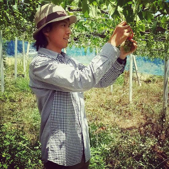 おととわ 自然栽培 木村式 無農薬無肥料