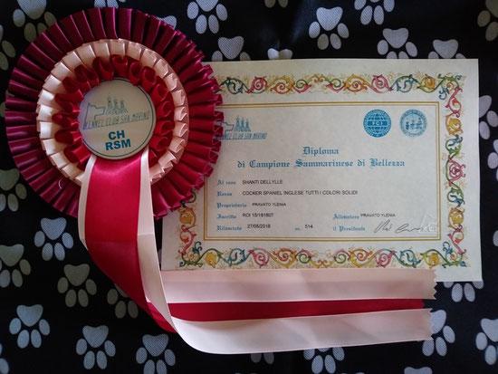 Diploma e coccarda del titolo CAMPIONE RSM Shanti Dellylle'