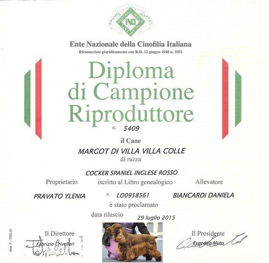 Finalmente la Margot è stata proclamata CAMPIONE RIPRODUTTORE primo cioccolato (tinta unita) in Italia !!!
