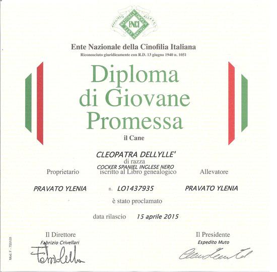 Ecco il diploma !