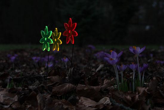 illuummi Leuchtblümchen
