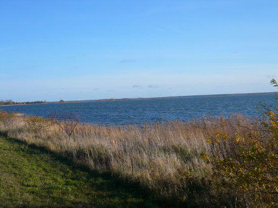 Boddenmeer am 11.11.2012