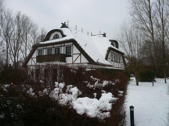 Haus Deichblick im Schnee am 16.1.2010