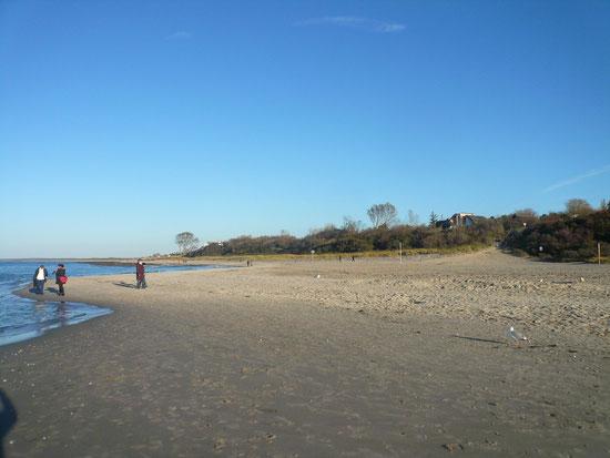 Strand am 4.11.2012