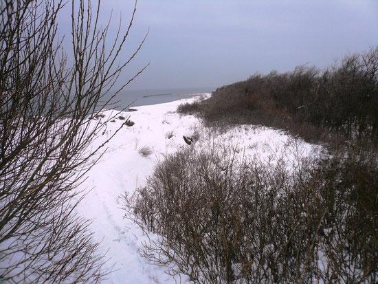 Wanderung im Schnee Januar 2010