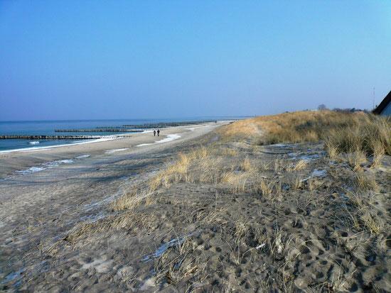 Strandwanderung am 1.3.2011