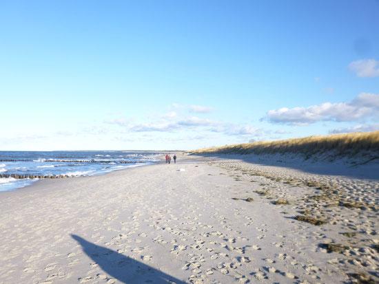 Strand 200 m von der Ferienwohnung
