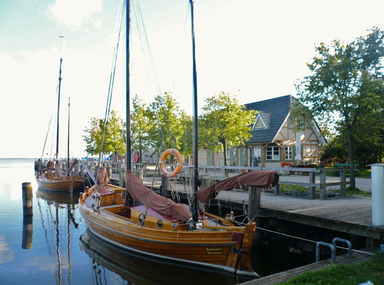 Zeesenboote im Althäger Hafen in Ahrenshoop