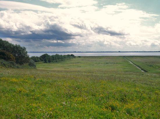 Satte Wiesen, Boddenmeer, skurile Wolken