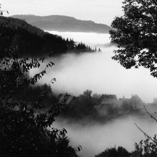 Sasbachwalden, Nordschwarzwald, Schwarzwald, Inversion, Inversions-Wetterlage, Nebel Sonne, In Nebel gehüllt, schwarz-weiss, monocrome