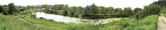 Живописный водоем и болото у подножия Кайской горы в черте «Памятника природы Кайская роща»