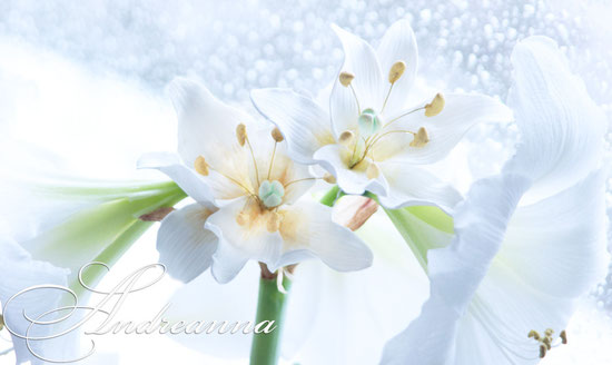 Лилии для волос, с нежным ароматом живого цветка. Стоимость 1цветка 150грн (крепление зажим или шпилька на выбор)
