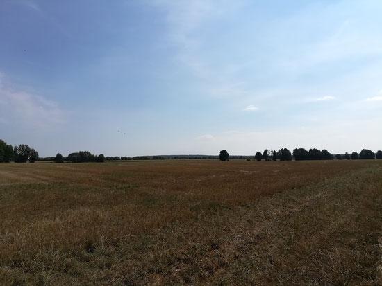 Blick vom Zarth auf den Keilberg