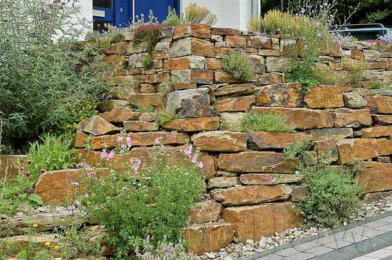 Trockenmauern Naturgarten www.naturgartenvielfalt.de dry wall stone dyke wildlife garden Kerstin Küchow native plants