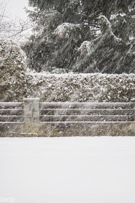 dieartigeBLOG - Schneetreiben auf der Dorfstraße vor der Einfahrt
