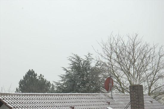 (c) S. Rieger   Schnee! - Snow!