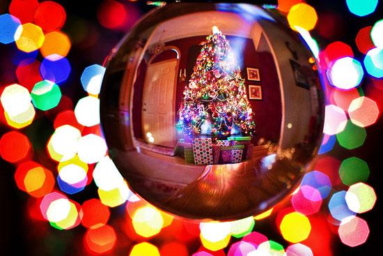 La magia dell'albero di Natale, regali e luci