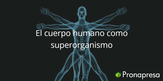 El cuerpo humano como superorganismo