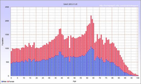 西条市の年齢別人口 2012