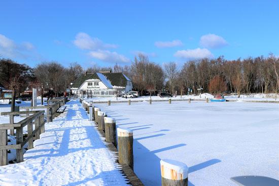 Ahrenshoop hat einen kleinen Hafen, den Althäger hafen, auf der Boddenseite. Das Bild datiert vom März 18. Von dem Althäger Hafen kann  man stundenlang am Bodden entlang wandern und rechts das Boddenmeer, links die unendlichen Wiesen und nach ca. 10 km de