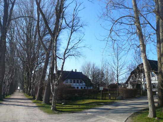 Weg zum Hohen Ufer - Einfahrt zum Grundstück rechts im Bild