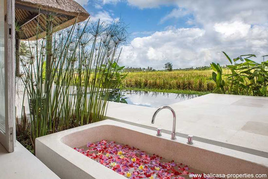 Ubud property for sale.
