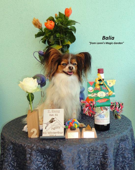 Balia-Blume